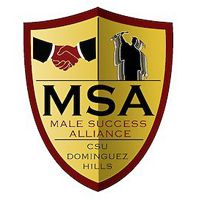 Male Success Alliance